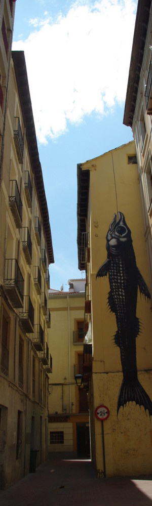 roa-animal-street-art-guerrilla-9